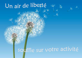 fleurs et aigrettes de pissenlit qui s'envole dans un ciel bleu
