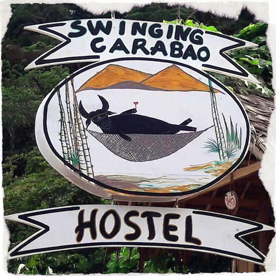Swinging Carabao Hostel