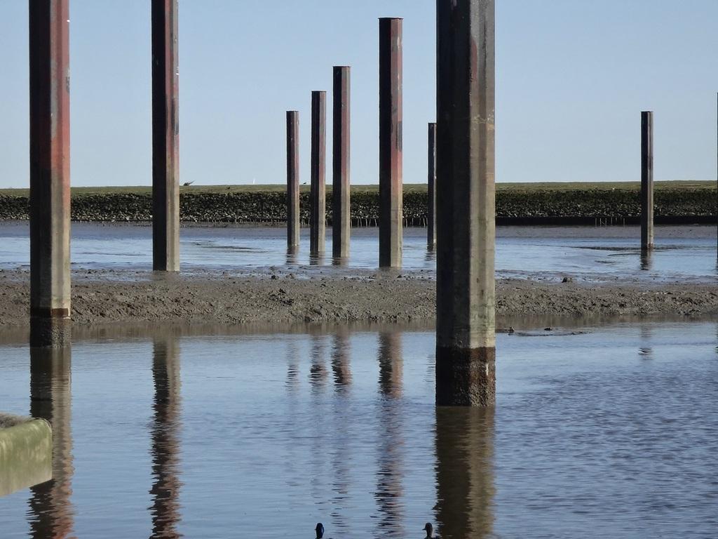 Ostern 2012 Nordschlengelbereich bis ca 1m Schlick bei MNW Foto:Uwe Wegner