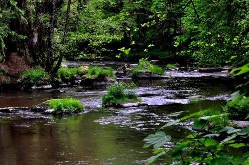 Das Waldnaabtal