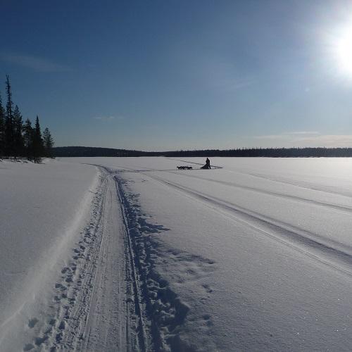 2013 Huskytour Finnland, Lappland