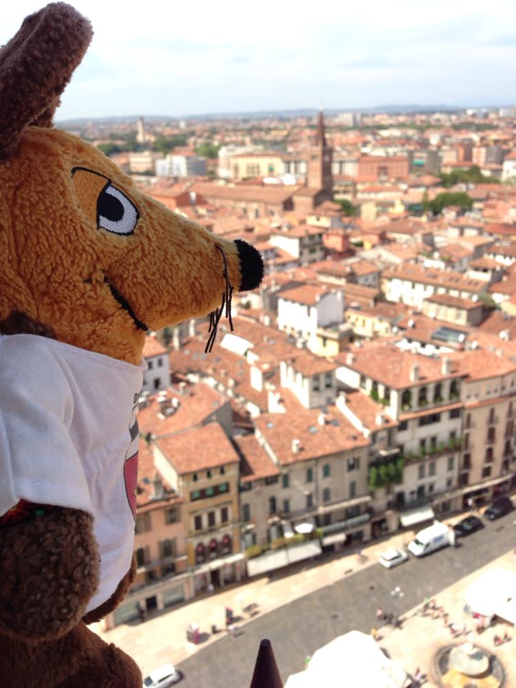 Blick von oben auf Verona