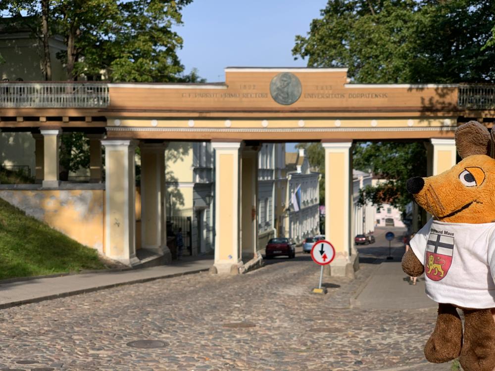 """""""Engelchen"""" Maus an der Engelsbrücke von Tartu"""