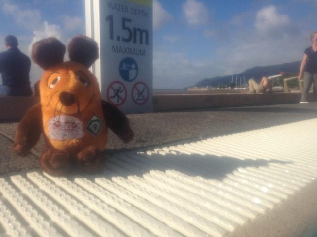 Bademeister Maus am öffentlichen Pool von Cairns