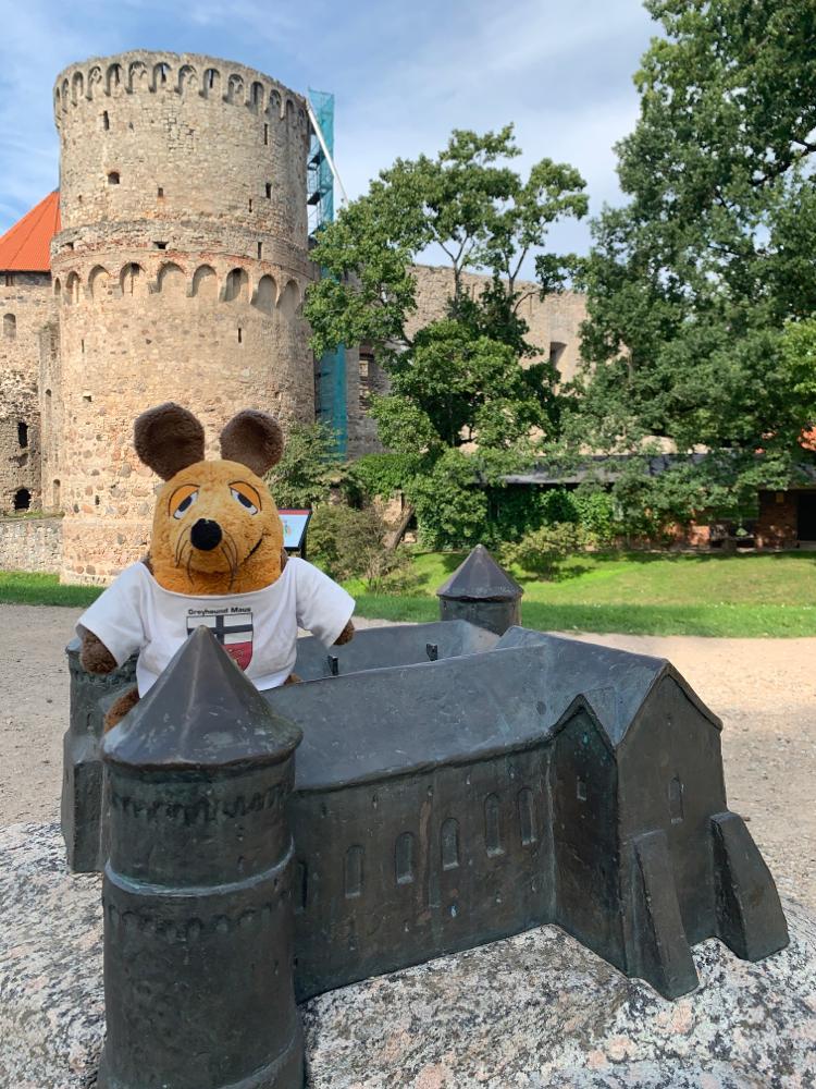 Maus im Modell der Burg