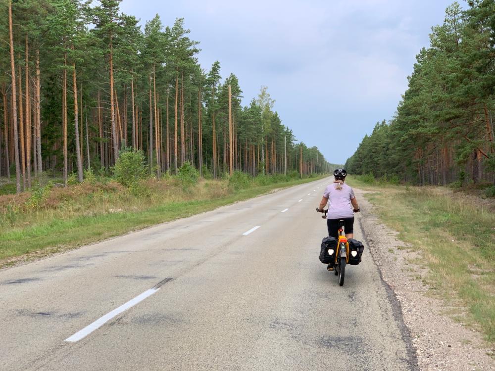 Endlose Strassen mit Wäldern rechts und links weisen uns den Weg