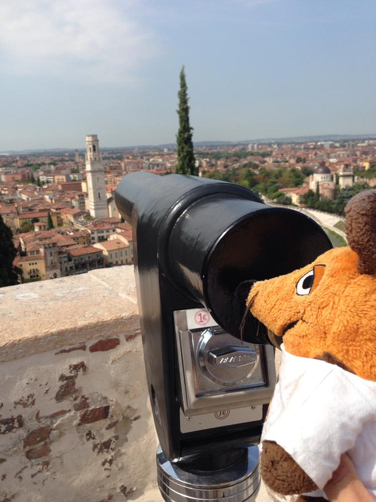 Ich beobachte den Dom von Verona von oben