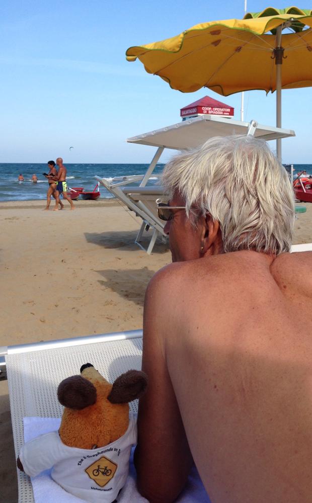 Der Greyhound und ich beobachten das Strandleben