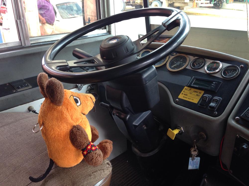Wenn ich nicht so kurze Beinchen hätte, könnte ich den Bus alleine fahren.
