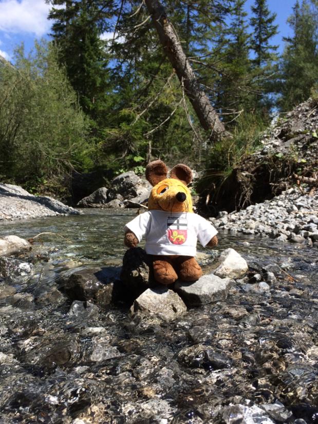 Nach dem staubigen Weg hoch zum Fernpass war das klare Gebirgswasser eine Wohltat !