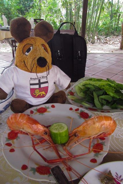 Ein Teil unseres Mittagessens - zum Glück weiß der Greyhound, wie man diese Tiere zerlegt und isst