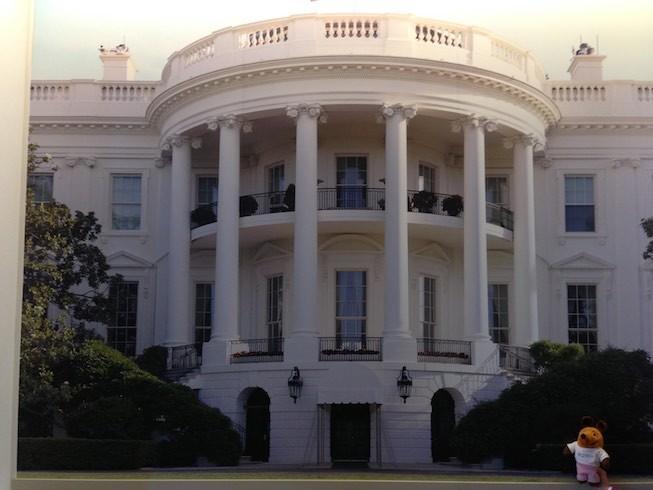 Maus hat sich durch den Zaun gemogelt und steht direkt vor dem Weißen Haus.