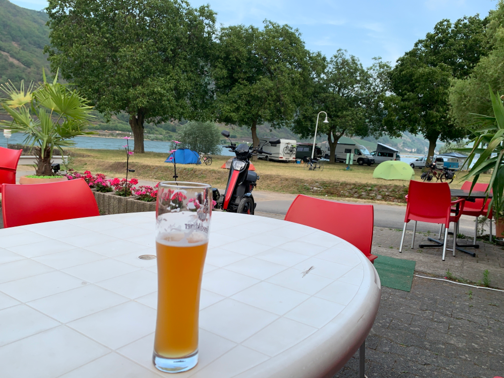 Links im Vordergrund das Weizen, rechts im Hintergrund das Zelt mit Fahrrad