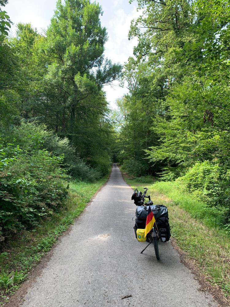 Eine sehr schöne Strecke durch den Wald - aber immer bergauf :-(