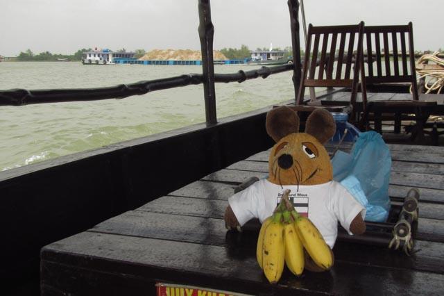 Zum Glück gibt es hier gegen meinen Hunger Bananen in einer für mich passenden Größe
