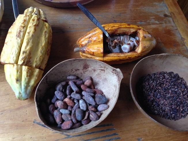 Von der Kakaoschote zur Kakaobohne
