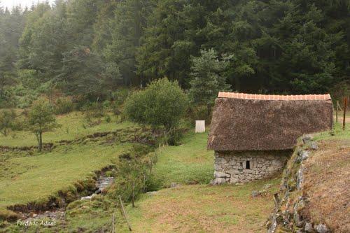 Moulin de Chadebec Bonnefond,Clédat, correze, village abandonné, visite, randos, VTT, dos d'ânes, Cheval, fête des roses, cocquelicontes, fête du pain, maquis,