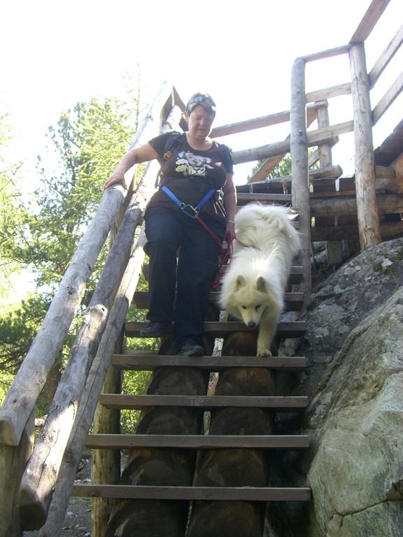 Steile Treppe - kein Problem