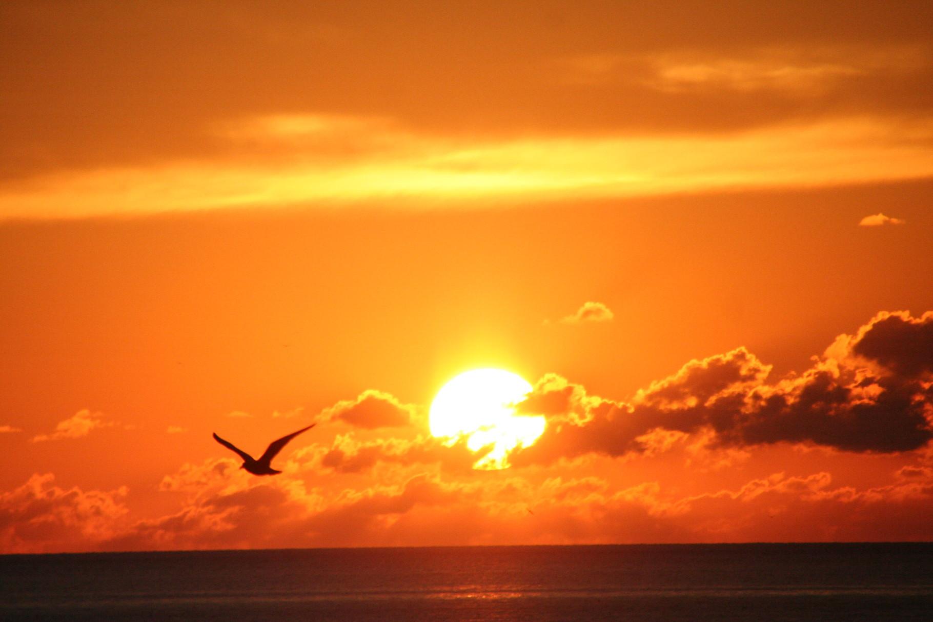 北海道神恵内の夕陽