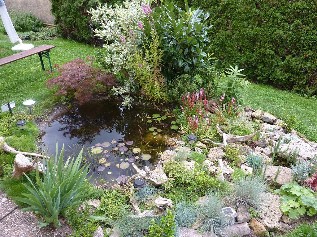 """Mehr Bilder unter """"Bildergalerie, Wasser im Garten, Projekt 2"""""""