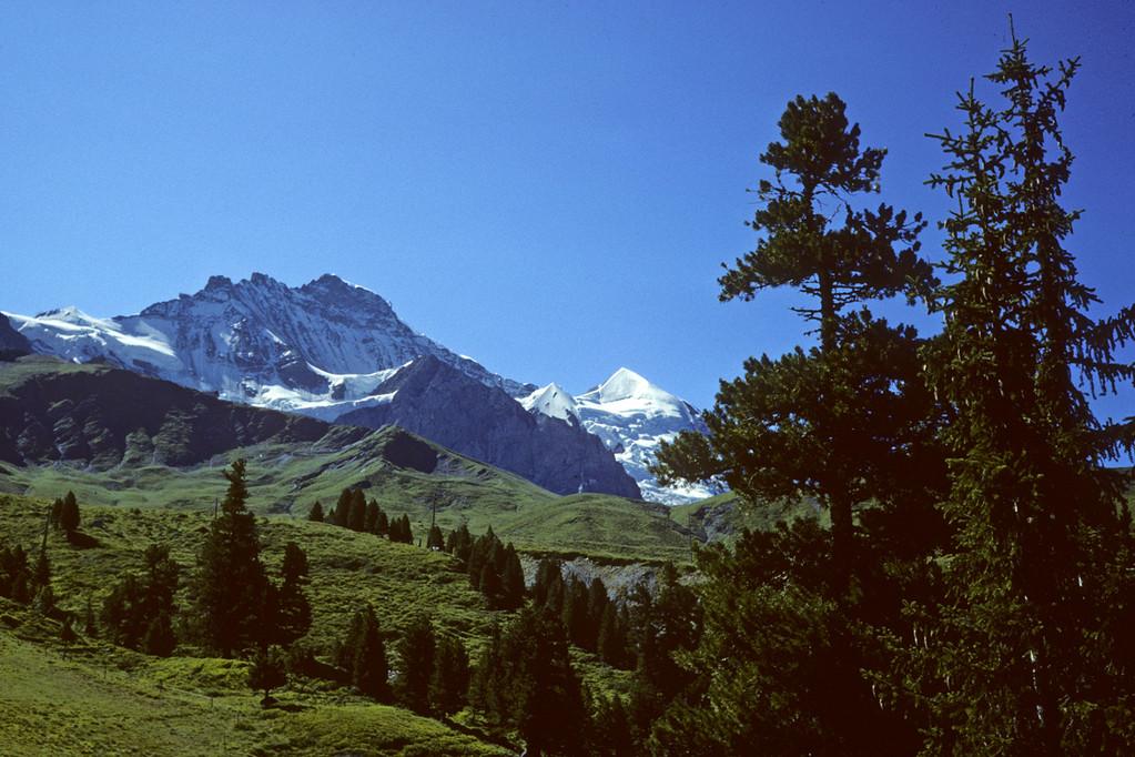 Jungfrau  4158m mit Silberhorn