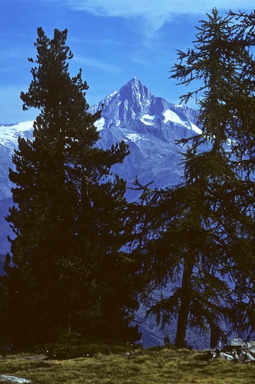 Bietschhorn 3934m  von der Hannigalp