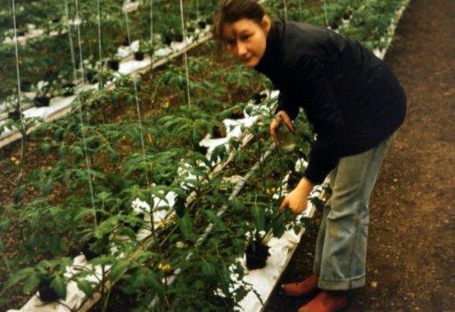 Ingeborg Schwarzwälder, ehem. Schubert ca. 1982, Foto: Familiennachlass