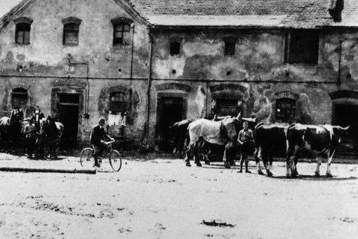 Arbeitsbeginn Rittergut Wunschwitz, 1930er Jahre, Foto: Nachlass Benno von Heynitz