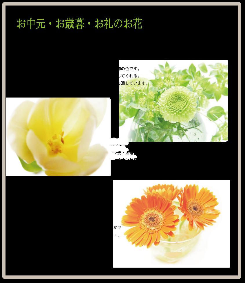 お中元・お歳暮・お礼のお花やお家への訪問などに贈られるのは、グリーン・黄色・オレンジの花が良いとされています。