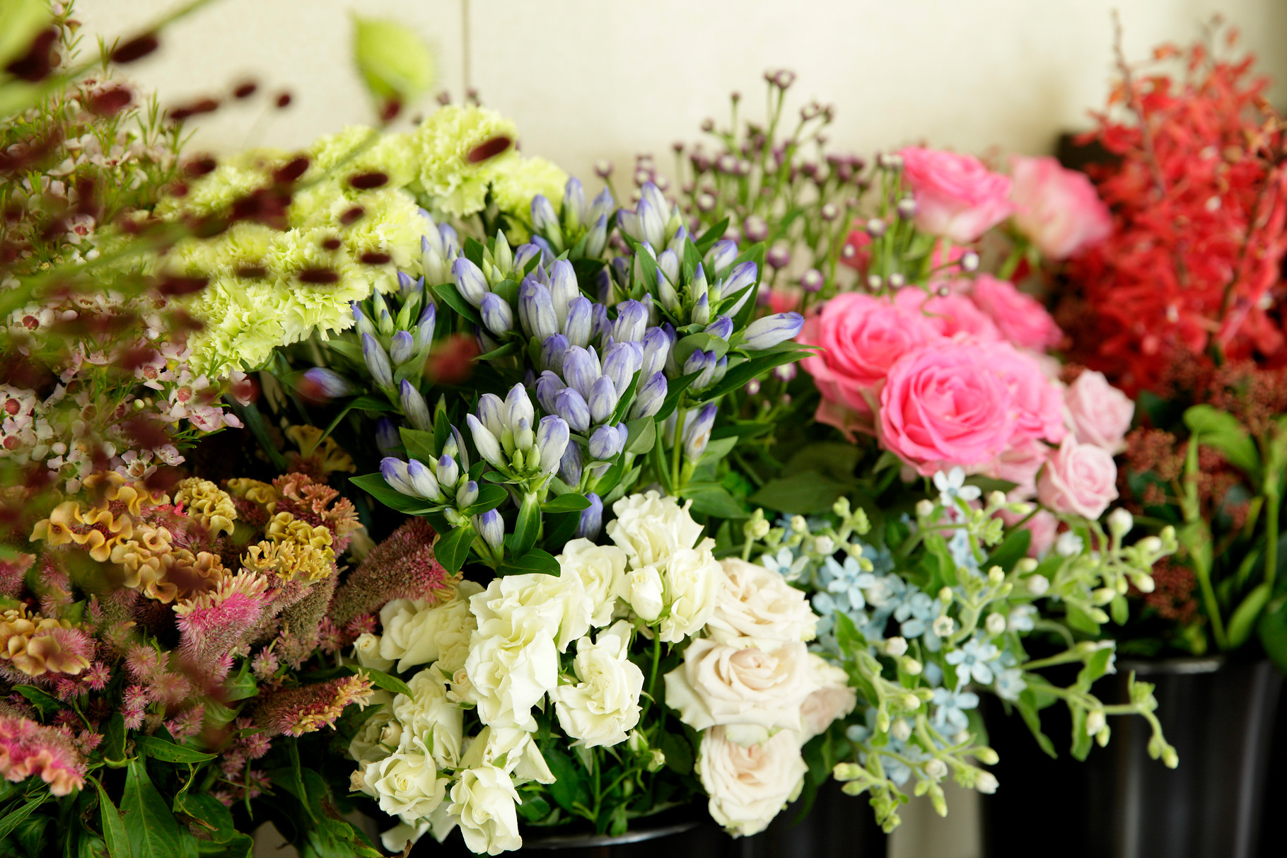 お花に囲まれた時間を楽しみましょう