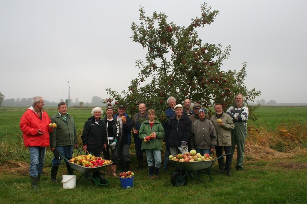 Das Streuobstwiesenteam bei der Apfelernte