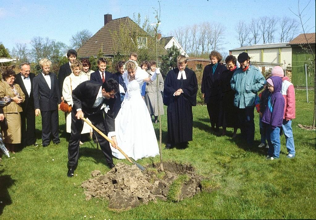 Frisch getreutes Paar pflanzt Hochzeitsbaum