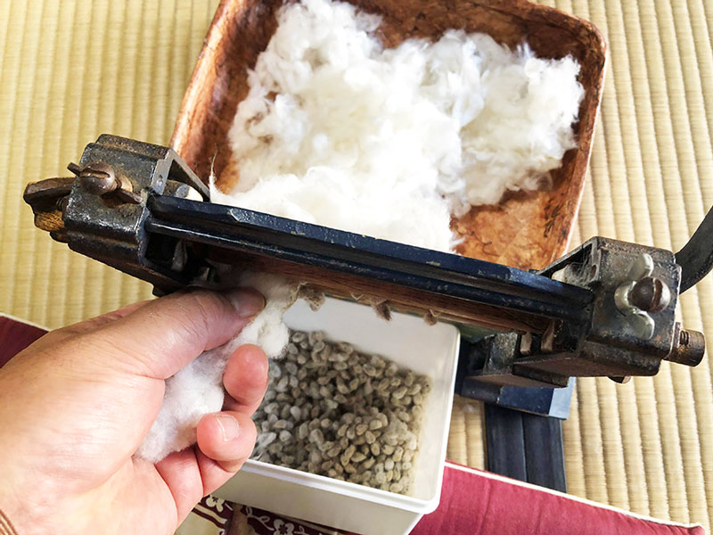 綿繰り作業