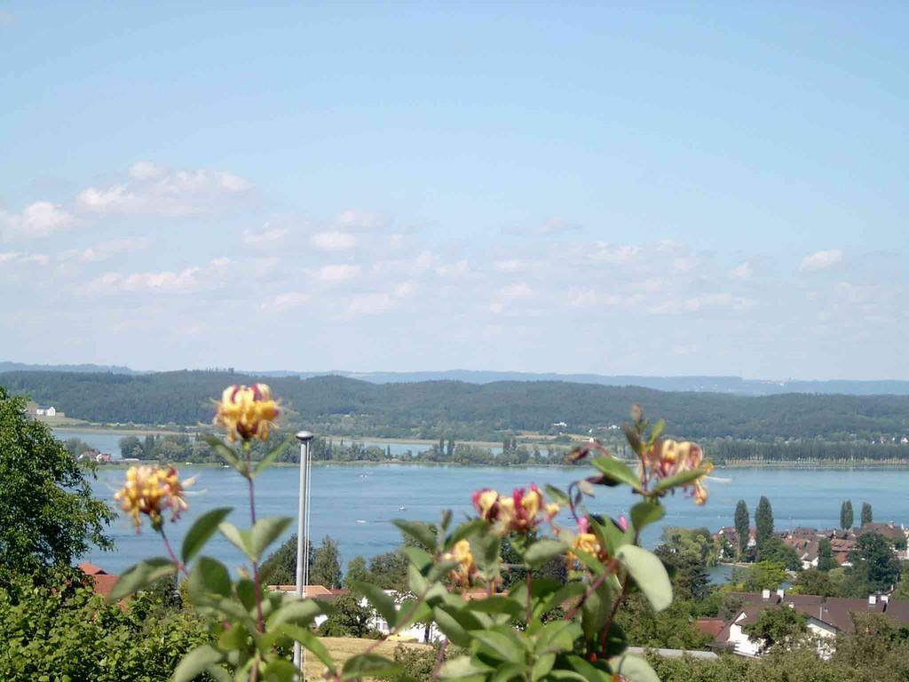 Durch die Blumen zum See