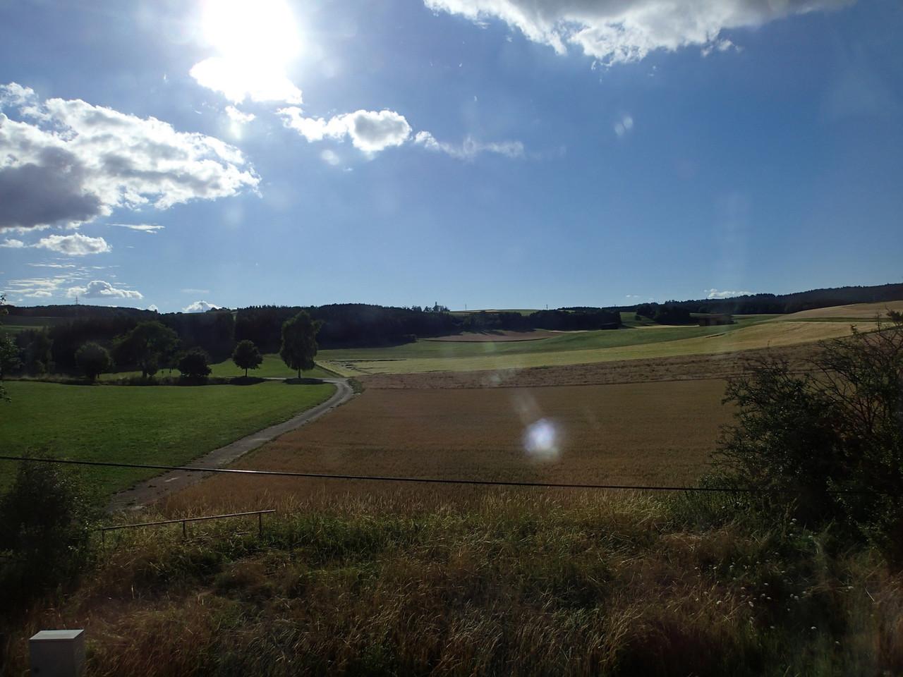 Der Schwarzwald bei Sonnenschein