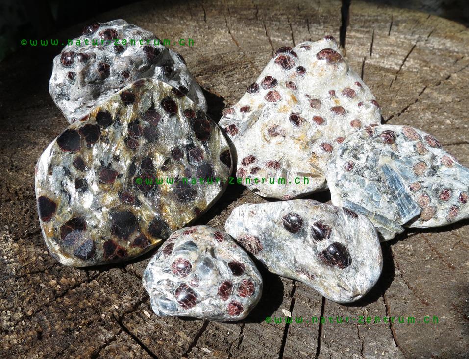 Granate mit Disthen in Muttergestein, Österreich