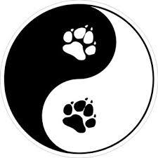 Unser Motto - Hund und Mensch im Gleichgewicht
