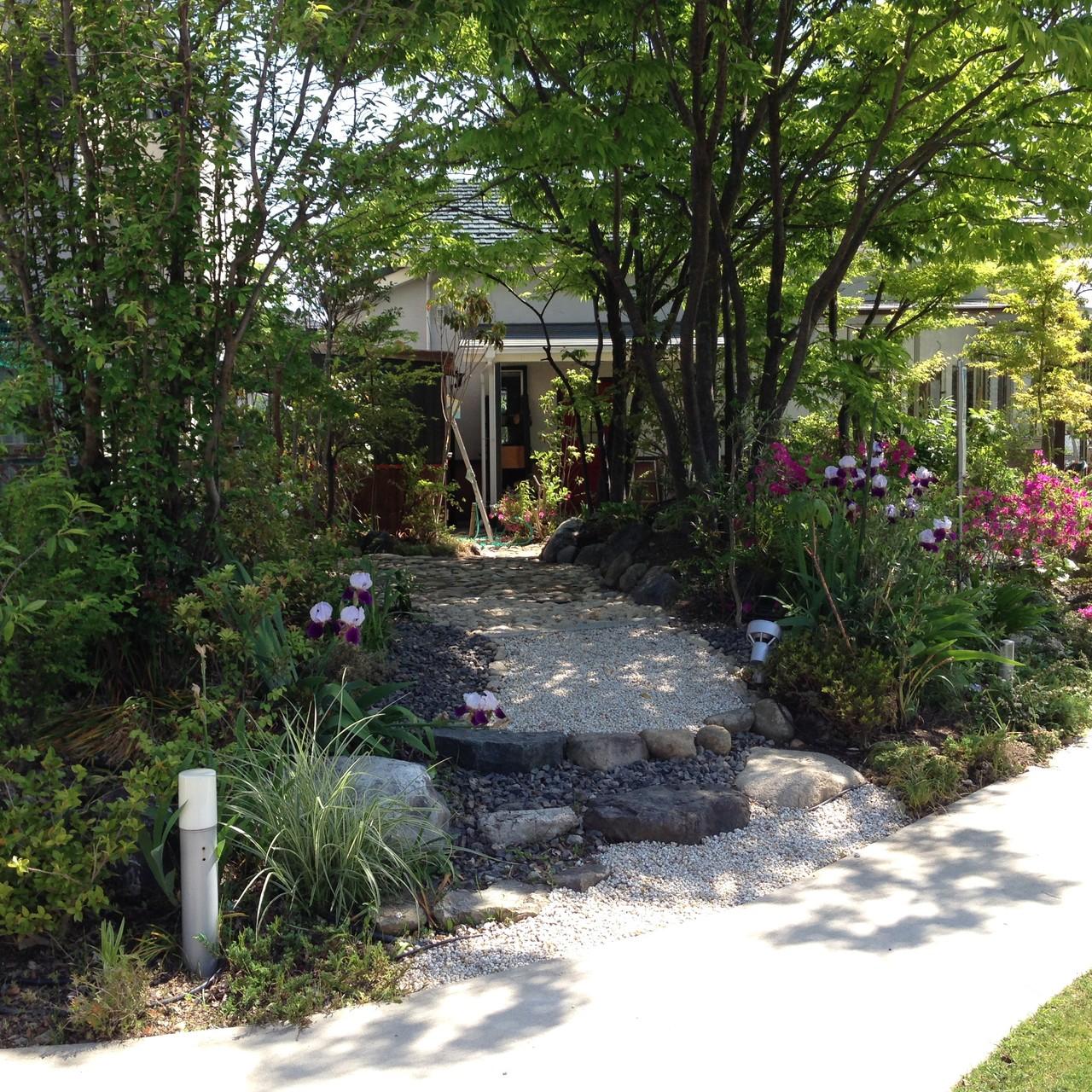 ショールームに通じる通路は日陰の庭、シェードガーデンです。