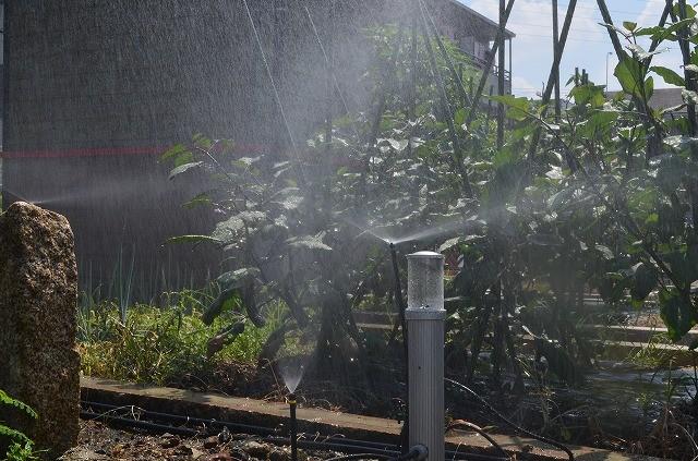 お出かけ・旅行の時の水やりも安心して行える自動散水装置のデモンストレーションを行っております。