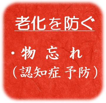 ・物忘れ(認知症予防)