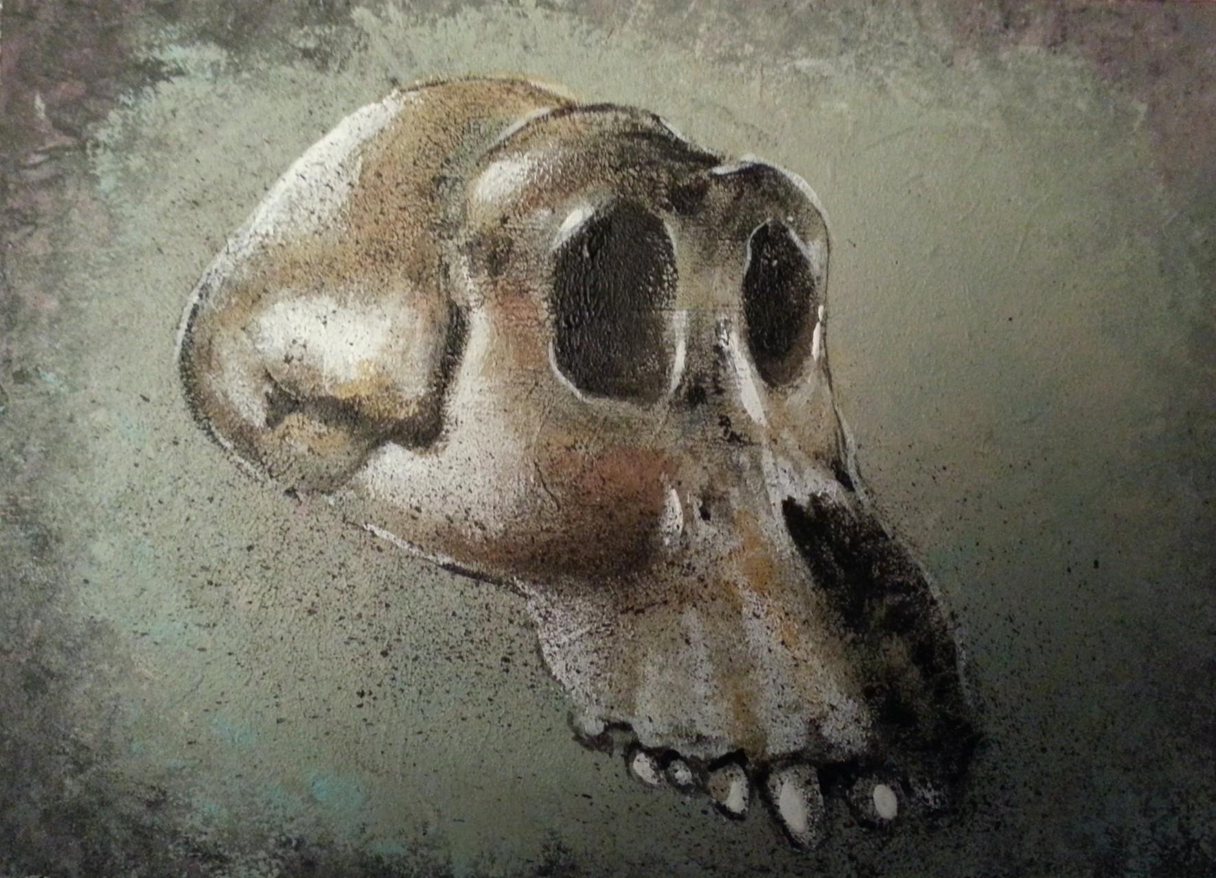 Skull 5 13x18 cm