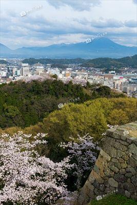 米子城から大山を望む