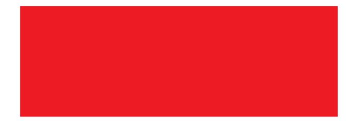RAID Basel-Paris Logo