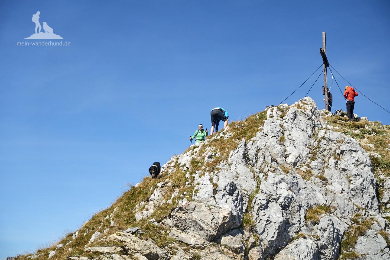 Wandern mit Hund Seehorn: Gipfel