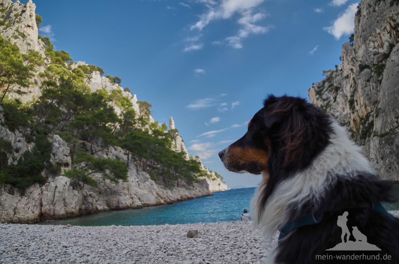 ... hat auch Ari Aussichten, die ihn so faszinieren, wie uns die Bucht :-)