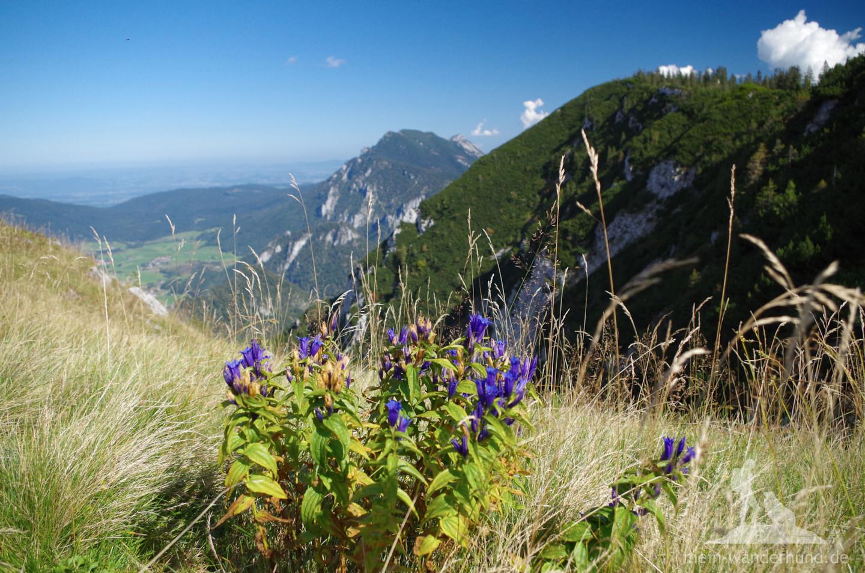Schöne Bergwelt.