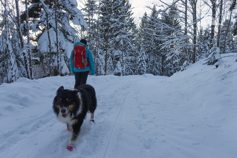 Winter Wanderung Inzell: Runter gehts im Abendlicht