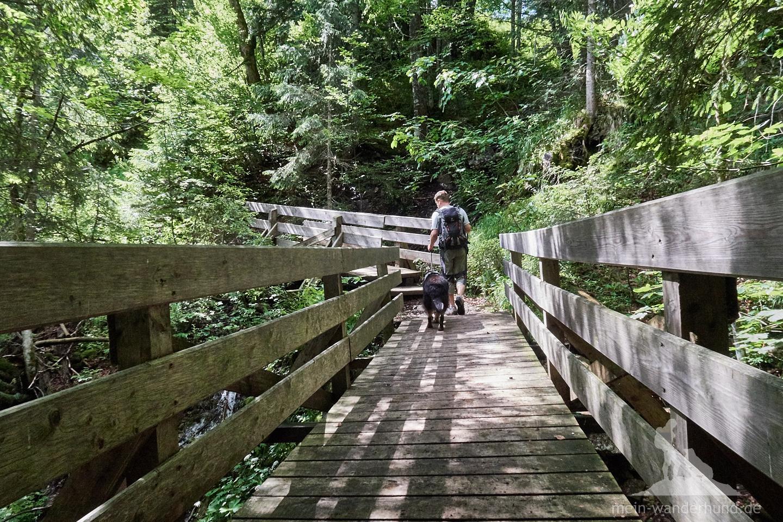 ... und führt dann über mehrere Brücken ...