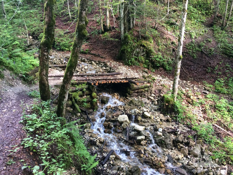 ... durch einen schattigen Wald am Rammelbach  und Zettelgraben entlang.