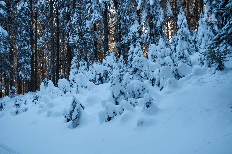 Schneemänner à la Winklmoos.